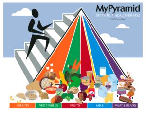 Principii nutritive necesare unui organism