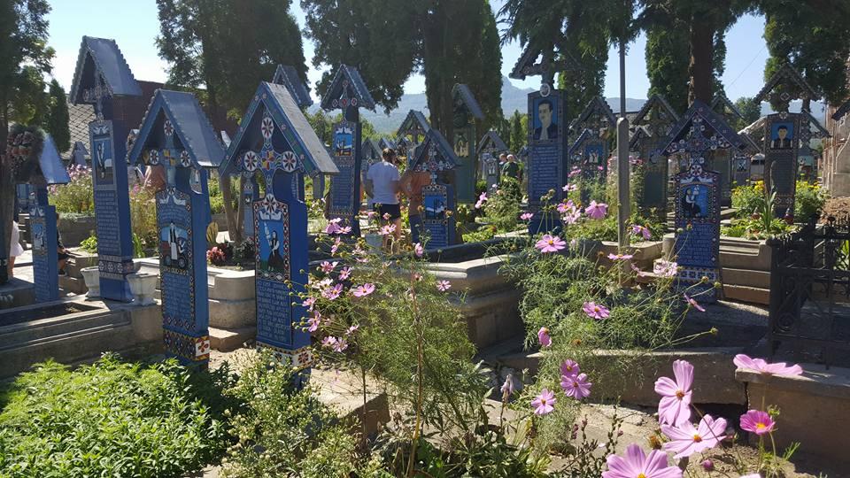 Cimitirul Vesel7
