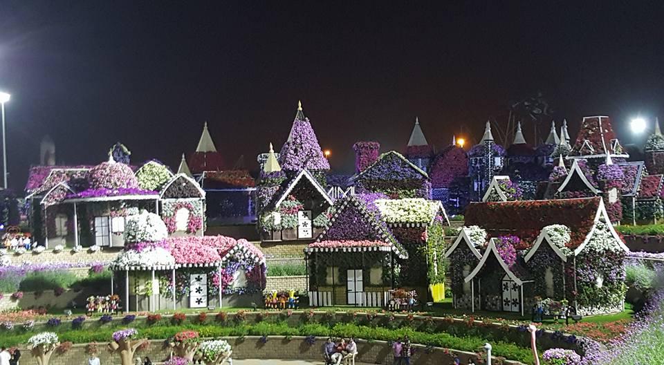 Miracle Garden Dubai22