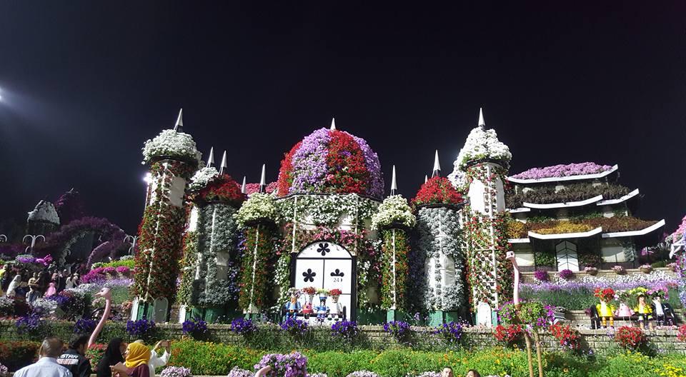 Miracle Garden Dubai28