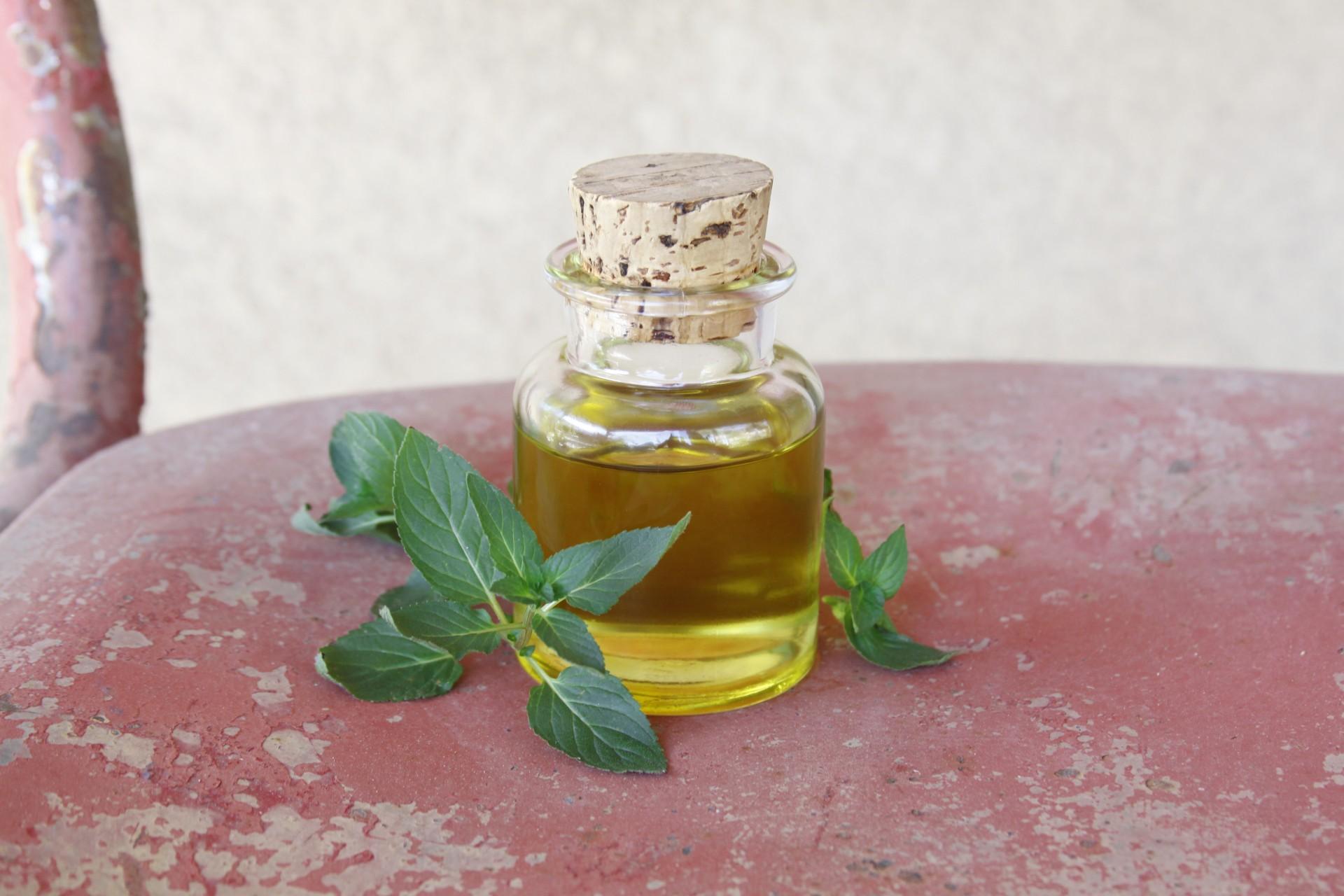 uleiul esențial de mentă