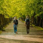 Ce se întâmplă în corpul tău când mergi pe jos zilnic