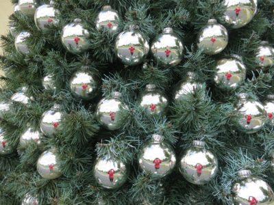Bradul de Crăciun, origini, tradiții și mituri
