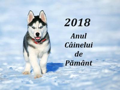 Anul Câinelui de Pământ